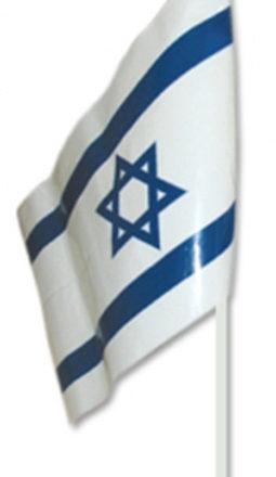 Israel kids Plastic Flag